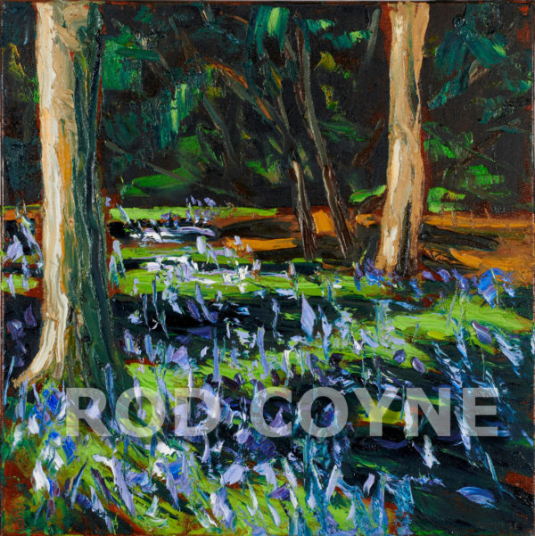 Bluebells painting by Rod Coyne, now as Bluebells Print