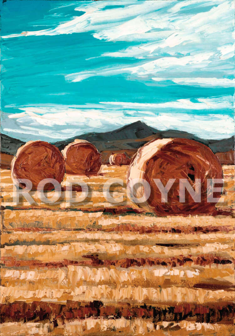 September Harvest - canvas print
