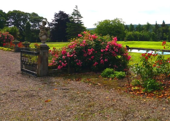 Roses, nymphs and lawns rolling down to the River Blackwater at the back of Tourin House.
