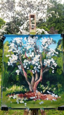 Rod Coyne's one hour painting demo at Kilmacurragh's Botanical Gardens.