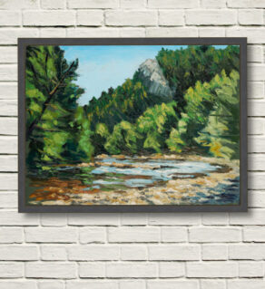 14_C_00_Rod Coyne_Avoca Downriver DVD_102x76cm_oil on canvas framed and displayedon a white wall