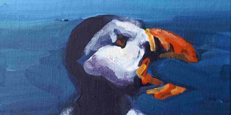 precahing puffin in detail by rod coyne