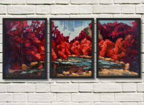 artist rod coyne's triptych canvas print is shown here in three black frames on a white wall