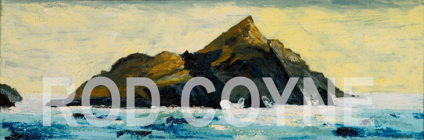 """artist rod coyne's seascape """"Puffin Tailwind"""" is shown here watermarked."""