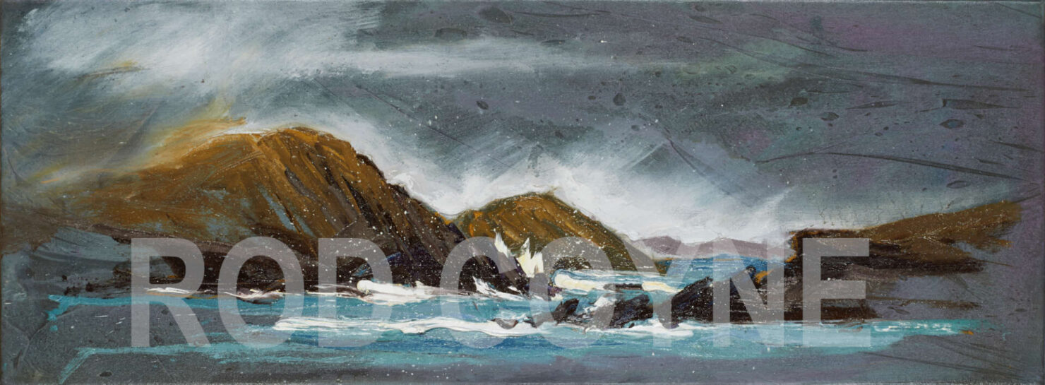 """artist rod coyne's seascape """"Lady's Ruff Weather"""" is shown here watermarked."""